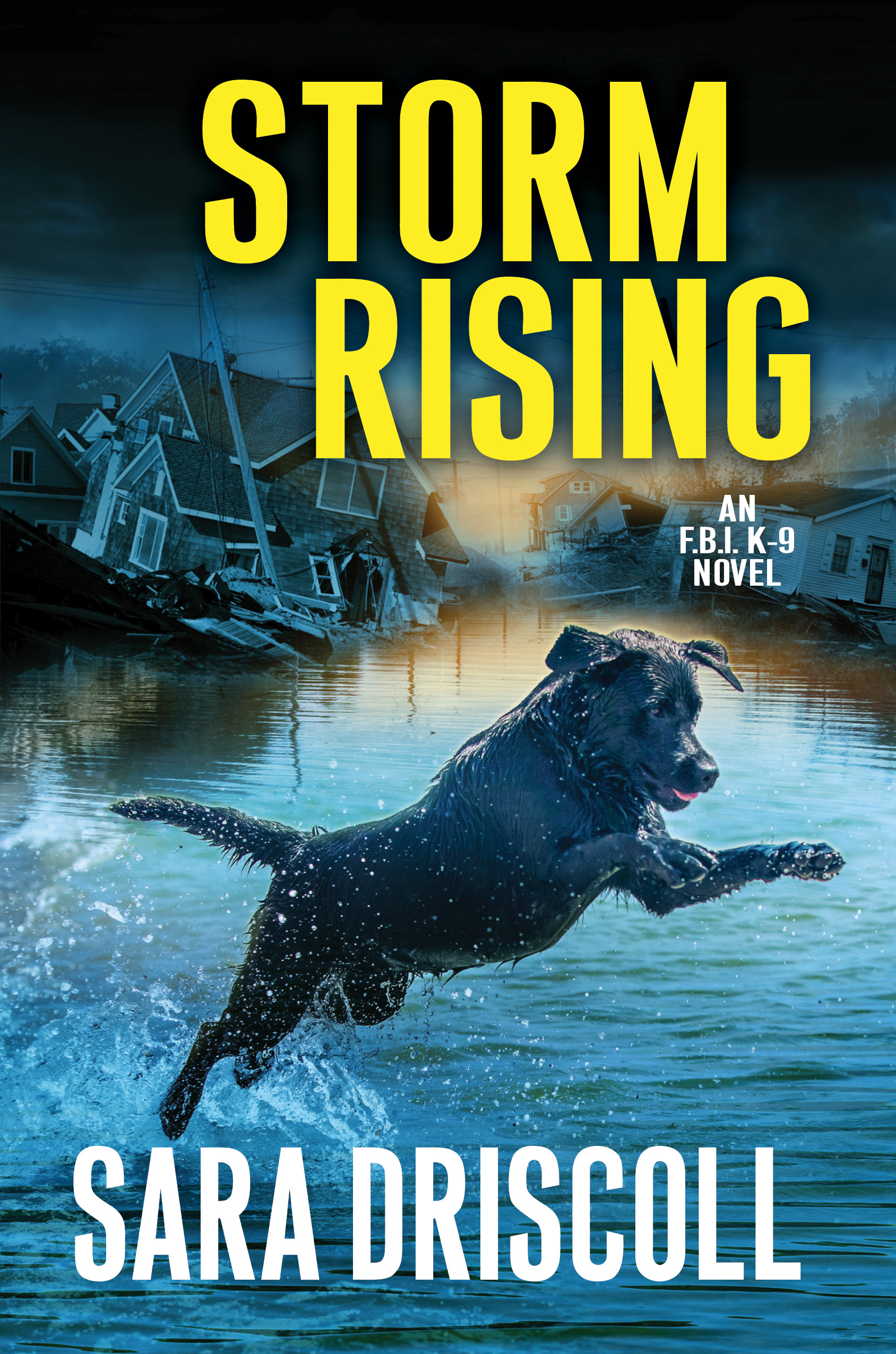 Storm Rising HC.jpg