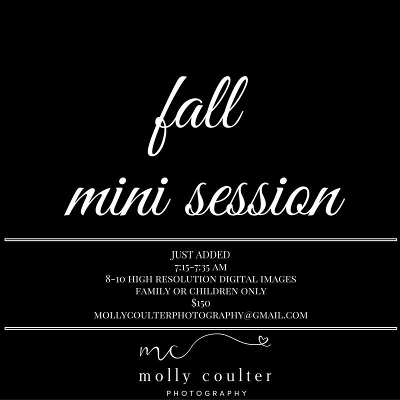mollycoulterphotographydallas mini session
