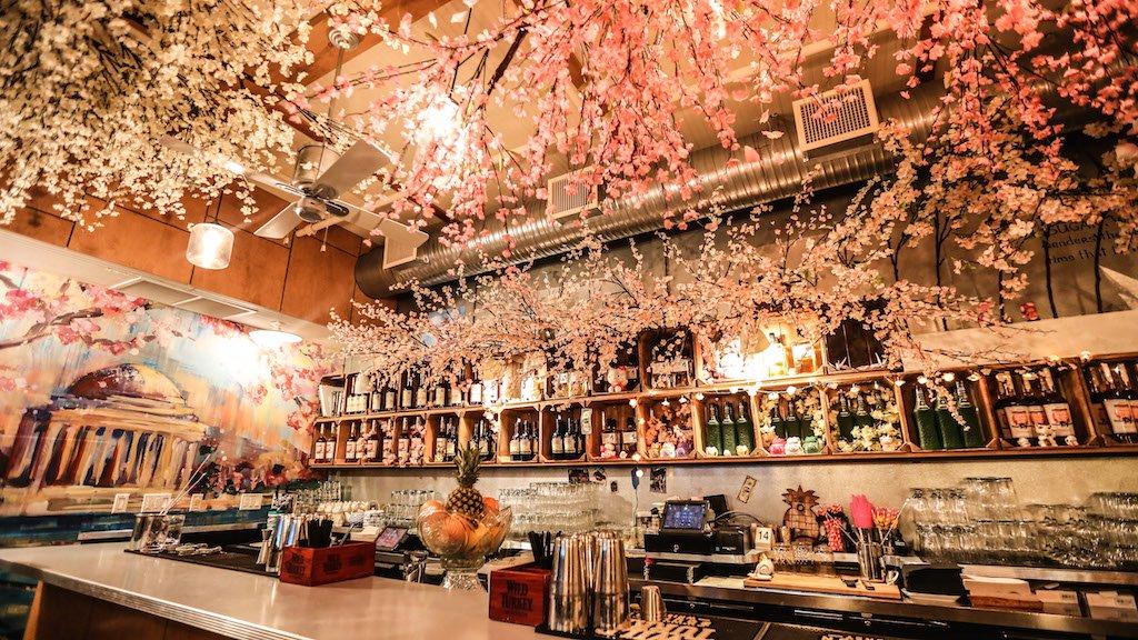 Southern-Efficiency-Cherry-Blossom-PUB-Photo-by-Farrah-Skeiky-2-1.jpg