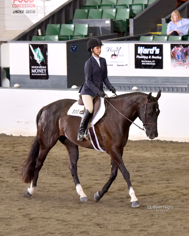 AQHA Region 6 Novice Youth Equitation Reserve Champion
