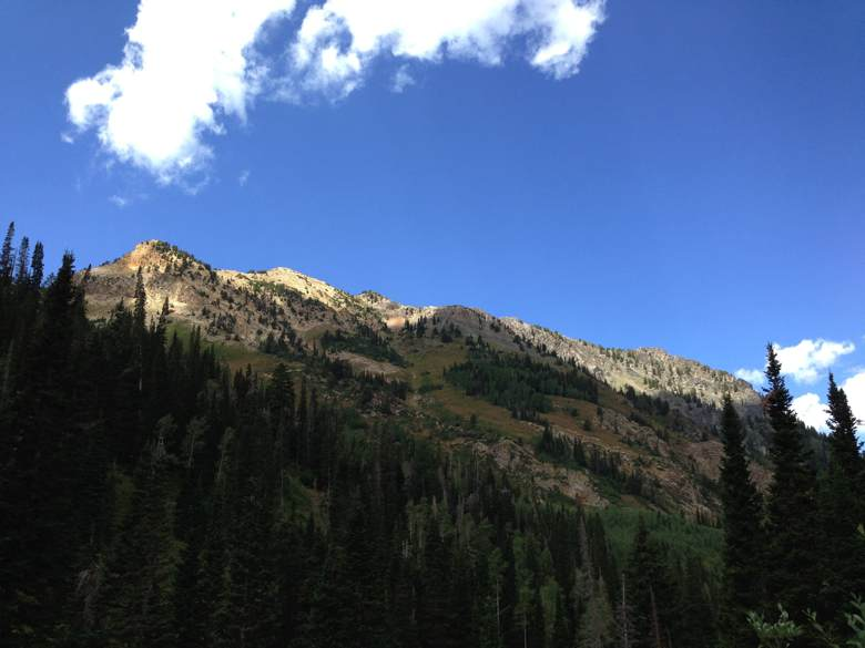 Big_Cottonwood_Canyon_06.jpg