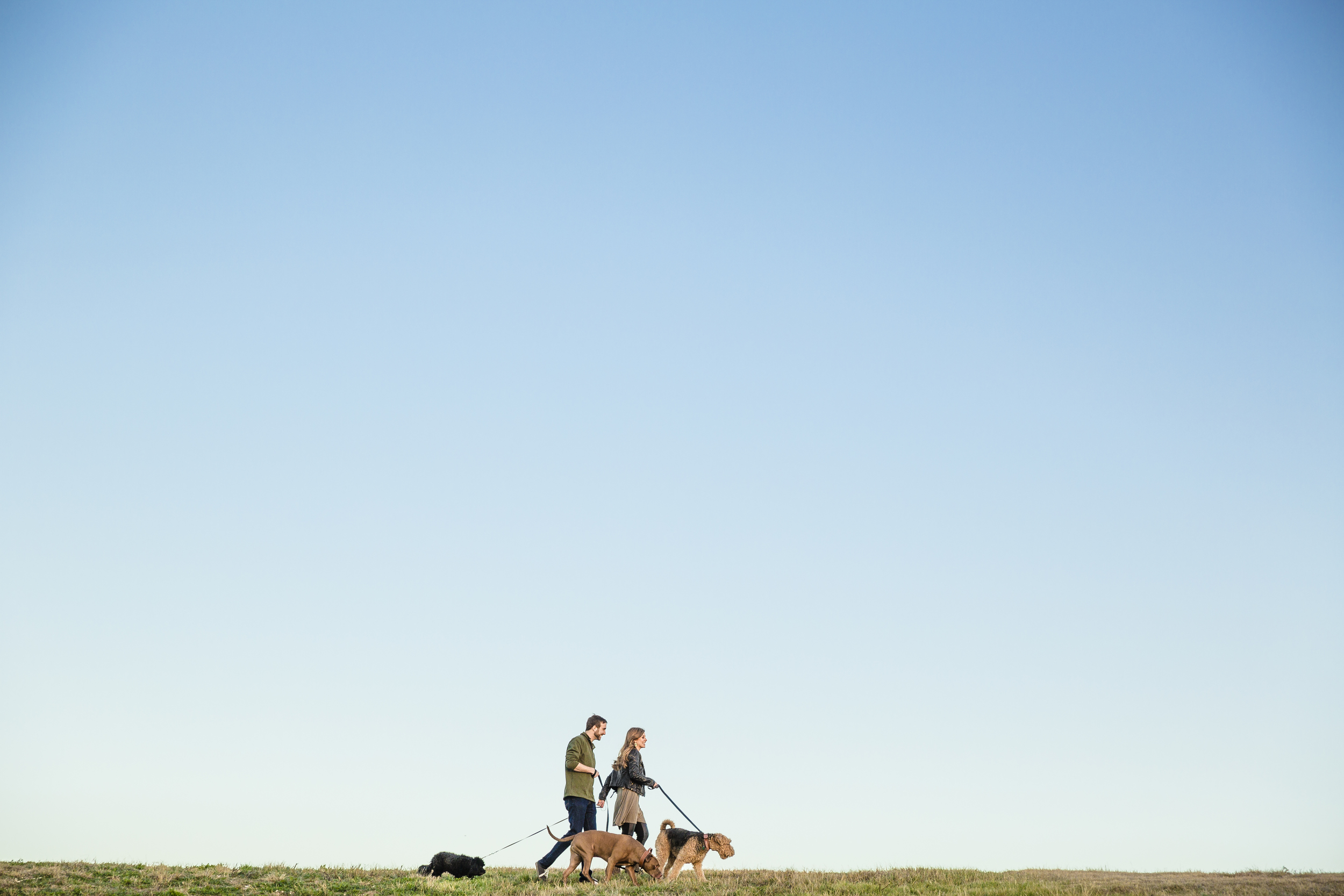 LUBBOCK FAMILY PHOTOGRAPHY, LUBBOCK FAMILY PHOTOGRAPHER, DOG PHOTOGRAPHER, WALKING DOGS,  BIG BLUE SKY