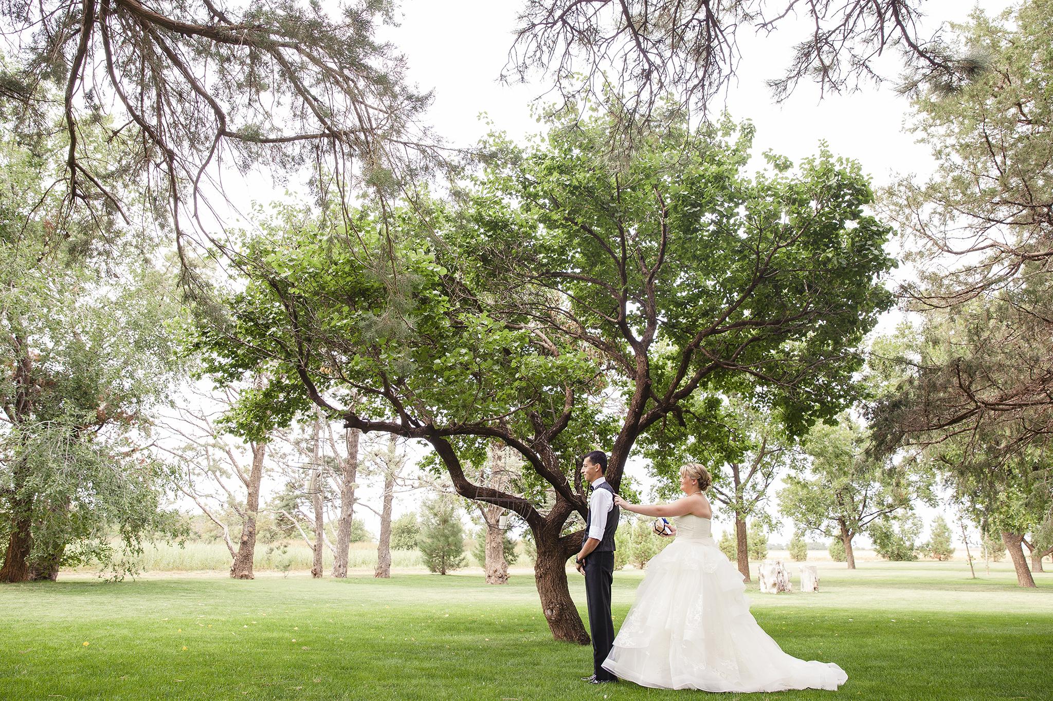 First look, outdoor weddings, Walnut Tree Weddings, Olton, Autumn Wedding, Fall Weddings