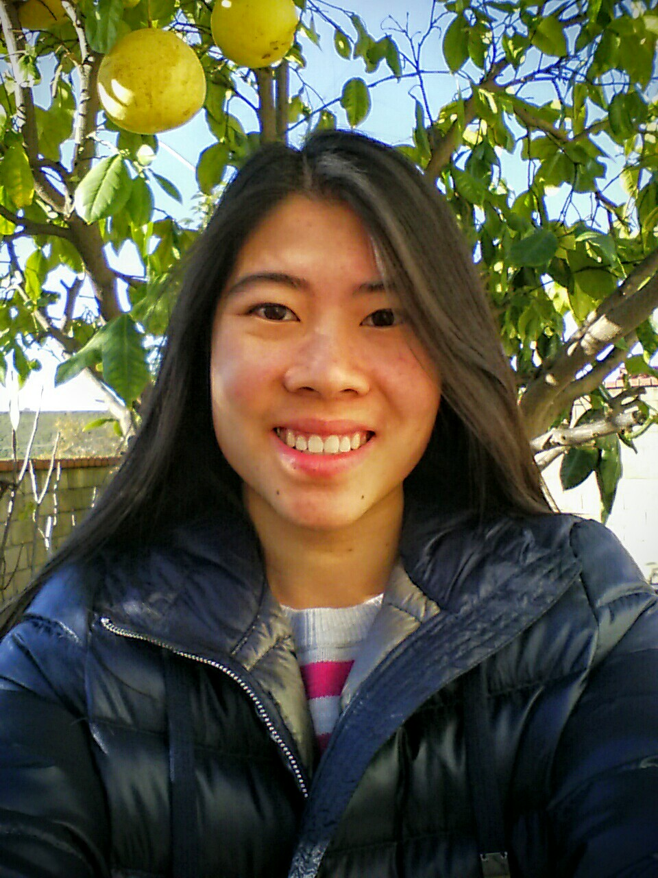 Karen Tom - Time in lab: SP 16-SP 18Studied: Alkali metal potential battery materialsCurrently in pharmacy school at USC