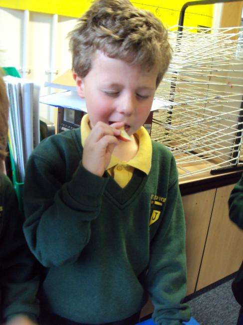 We also used our nose to smell what was in the containers.