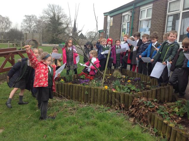 In science we identified and named common, wild and garden plants in our school garden.