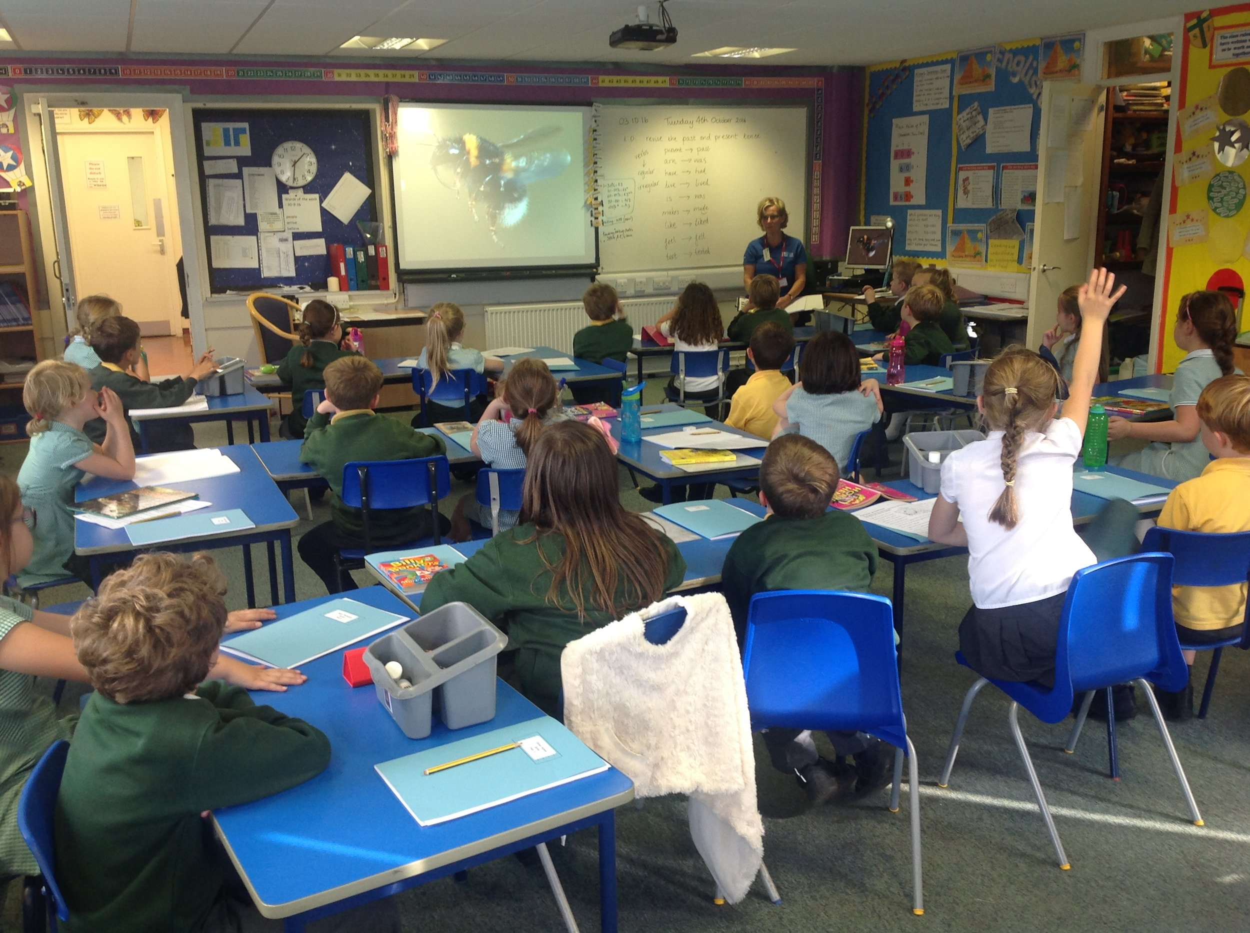 Listening to an introduction about wildlife and its habitats.