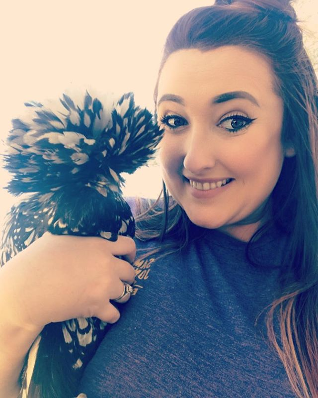 We got four new chickens last night and two of them were Polish silver seabrights! These chickens are super beautiful and because they're Polish they have these crazy afros! Since I have two of these I want to give them cool twin-like names, so give me your best suggestions!