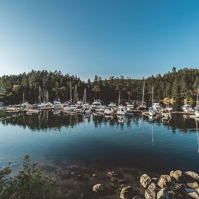 Only 7 weeks left to enter our Trifecta contest and you could be the lucky winner of $1000 in moorage! • Stay at any 3 Mill Bay Marine Group properties between now and Sept 30th, 2018 and you will be entered into a draw to win $1000 in moorage ⛵🚤⛴ • ➡ Port Browning Marina Resort ➡ Pacific Gateway Marina ➡ Mill Bay Marina ➡ Port Sidney Marina ➡ MK Bay Marina • Full contest rules and details here mbmg.ca/trifecta • • • • #millbaymarina #poprtbrowningmarina #portsidneymarina #pacificgatewaymarina #mkbaymarina #explorebc #explorecanada #beautifulbc #westcoast #happyboaters