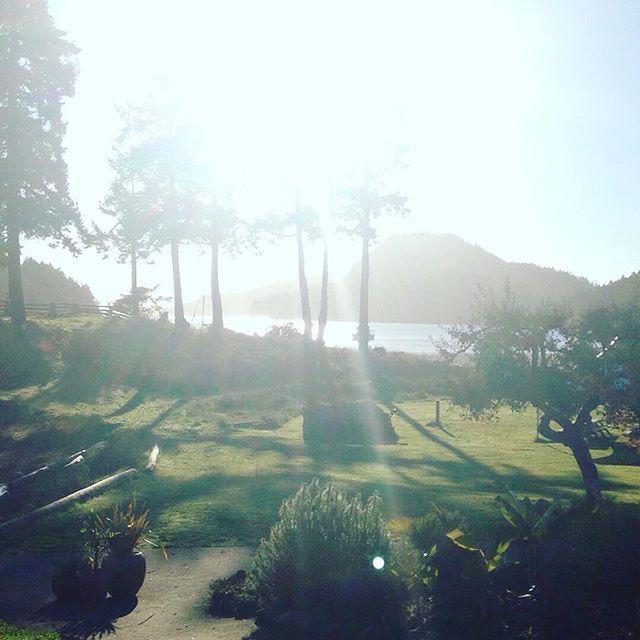 Mornings in paradise! You should join us!!! #islandlife #happyboaters #sailing #penderisland #gulfislands #portbrowningmarina #portbrowning #powerboats #millbaymarinegroup
