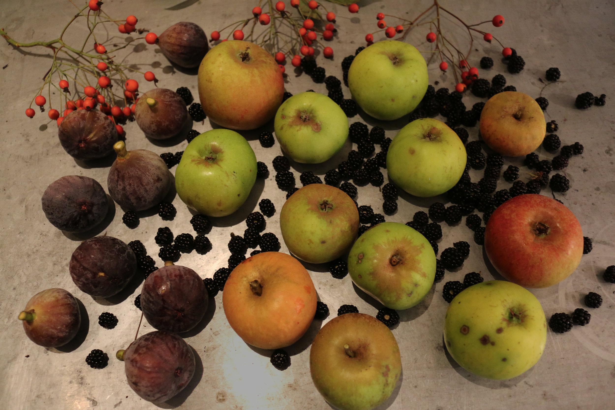 blackBerry-clafoutis-recipe-gourmandesante