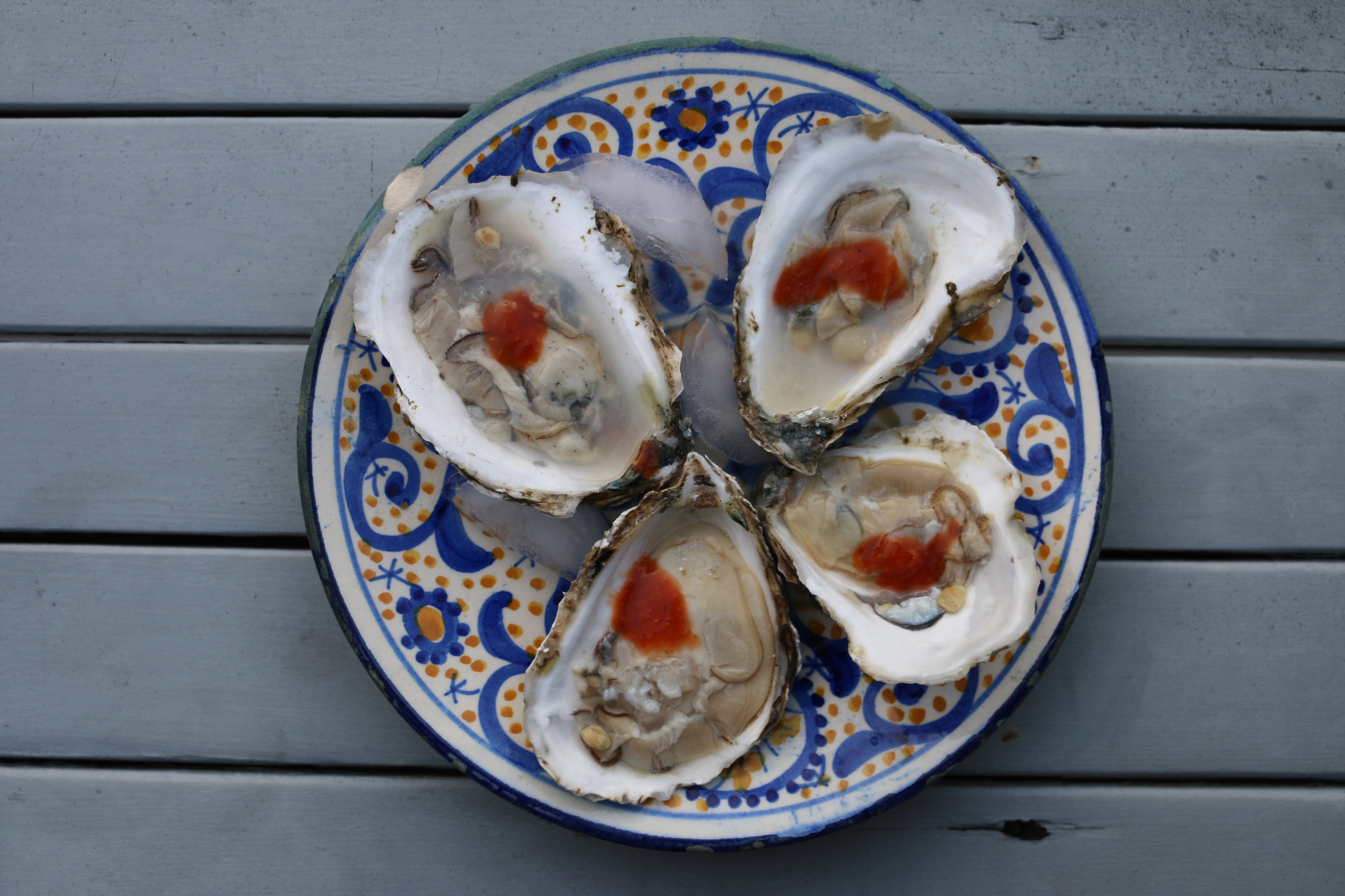 oysters-gourmandesante