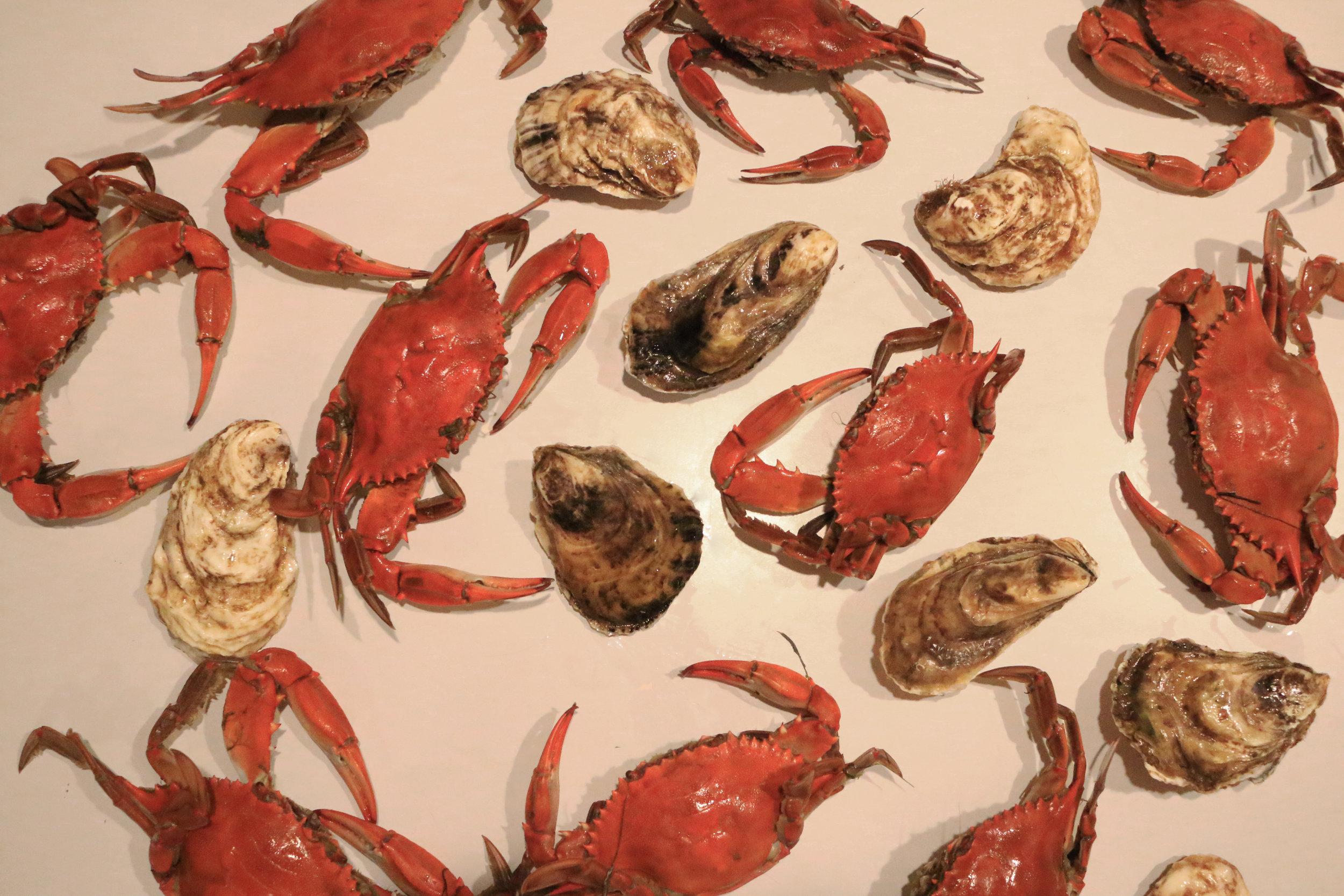 Seared Scallops-coconut crab-gourmandesante