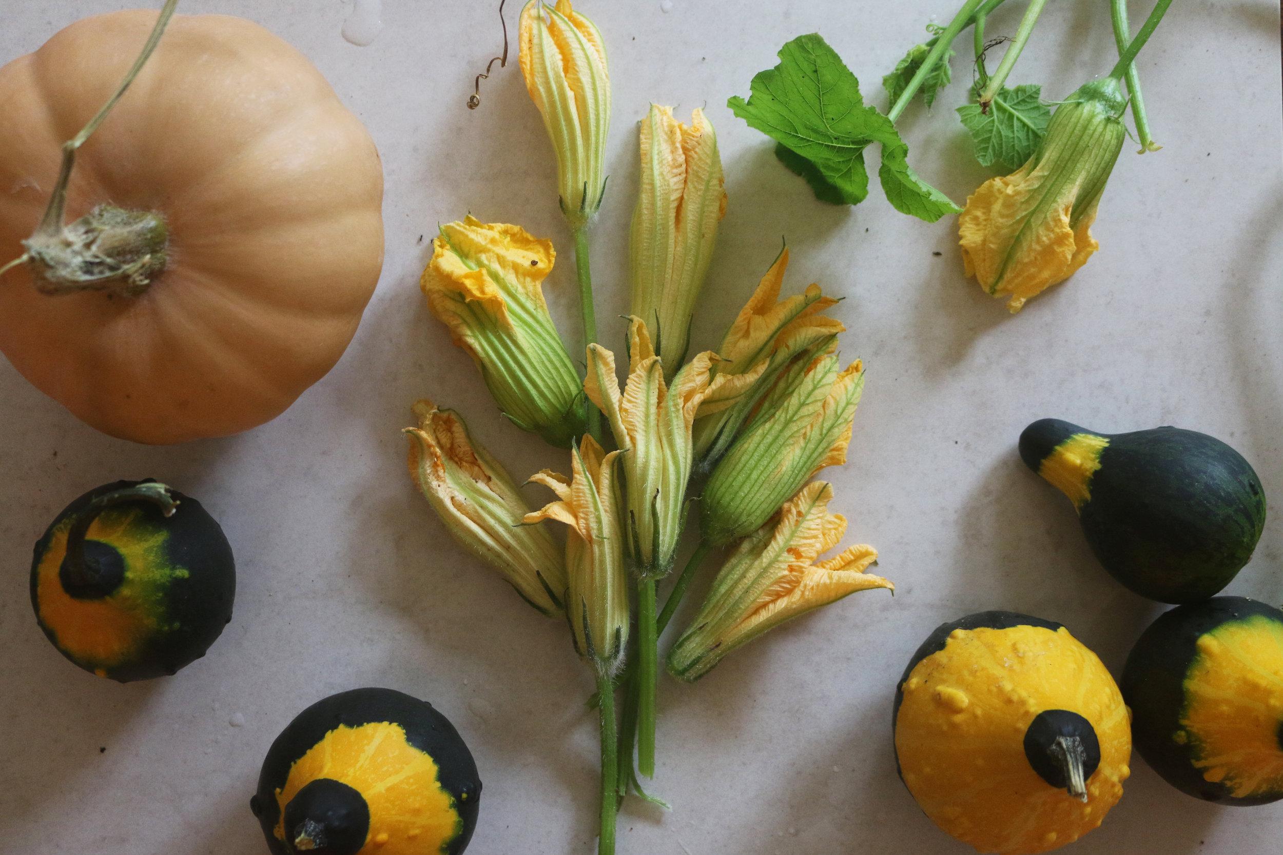 Squash-soup-stuffed-blossoms-gourmandesante