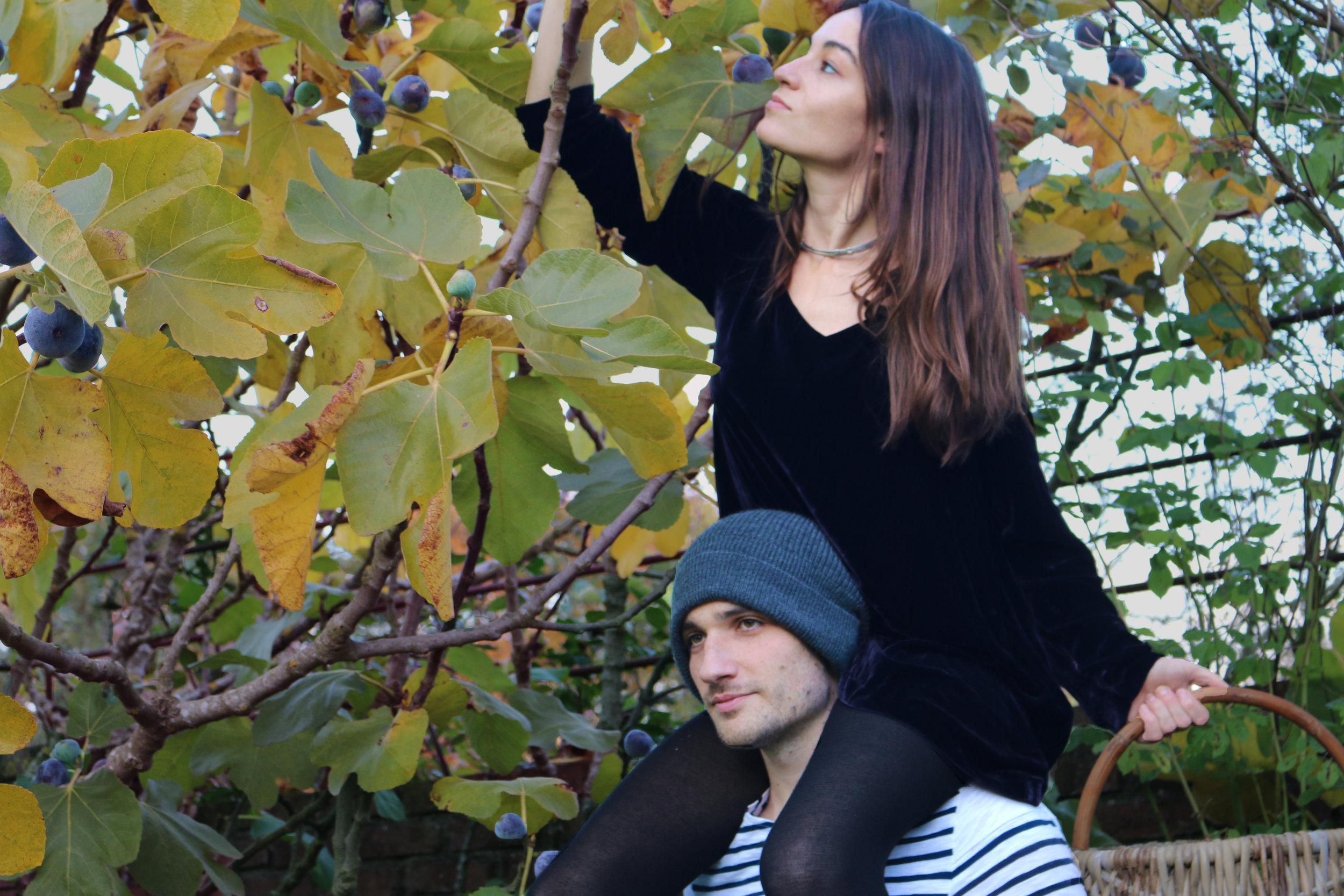 Figs-Gruyere-GourmandeSante-LisannaWallance
