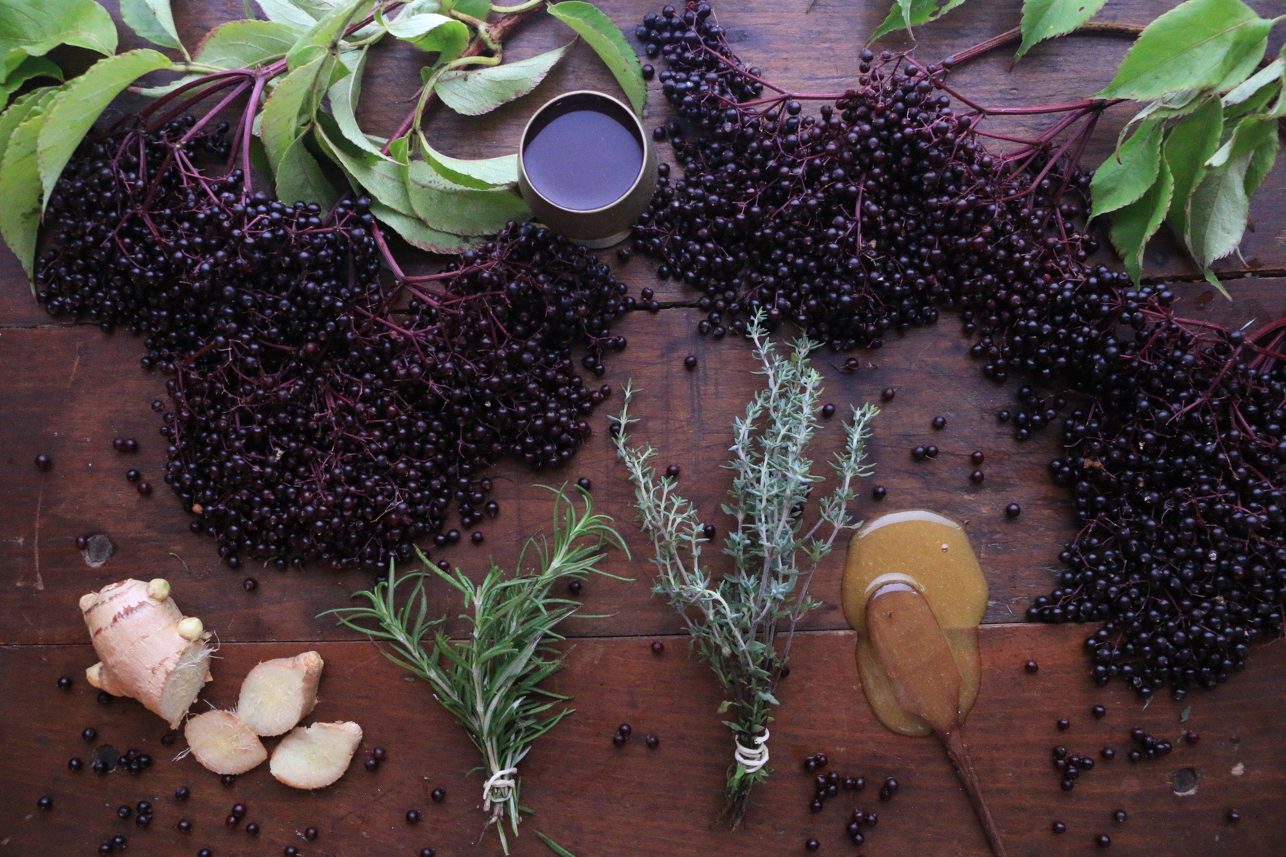 Elderberry-syrup-culinarywitch