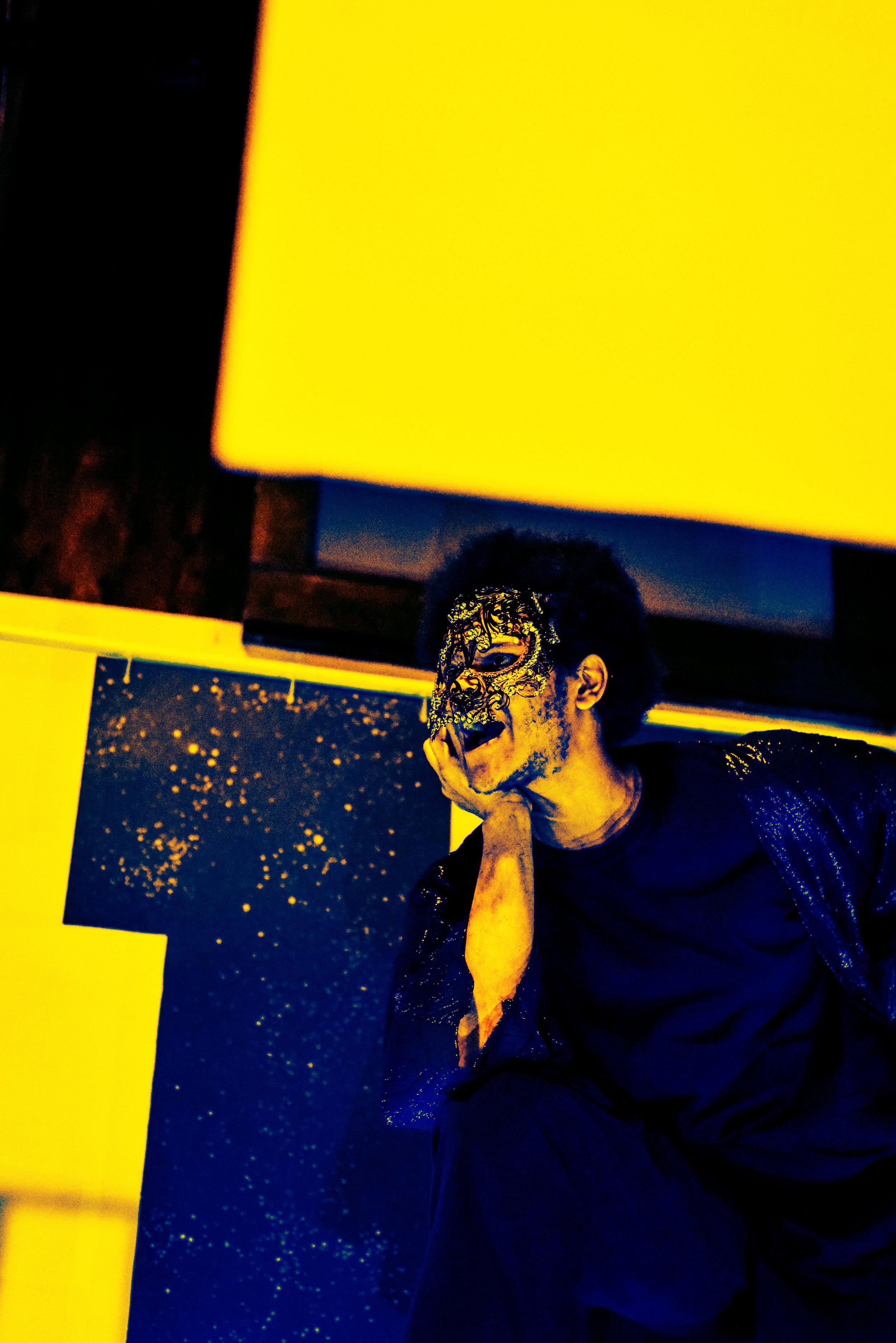 DSC_7324 yellow.jpg