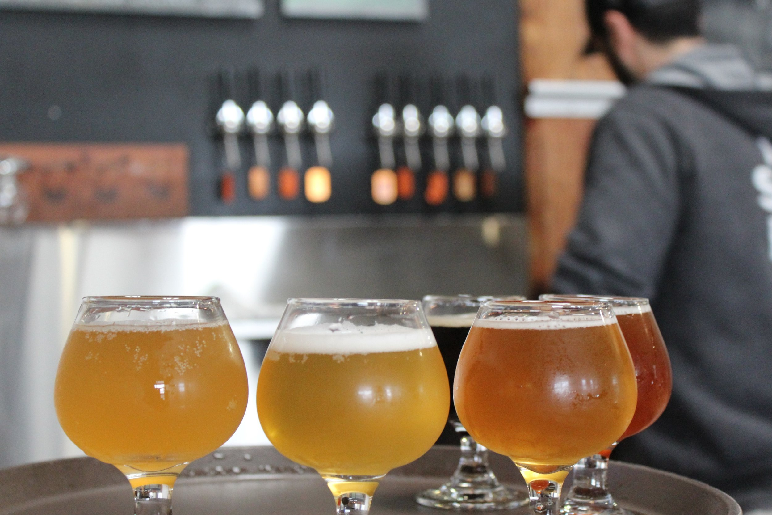 craft-beer-tasting-tour-sonoma-and-napa