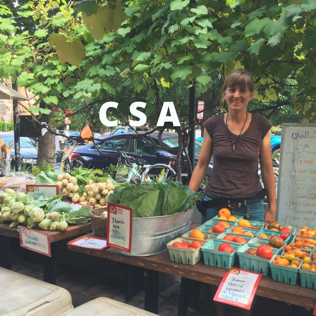 CSA  - Pickup on Tuesday evenings in Bloomingdale, Brookland, Columbia Heights and on the farm in Upper Marlboro, MD. Pack your own share, selecting from an array of options selected by your farmer.