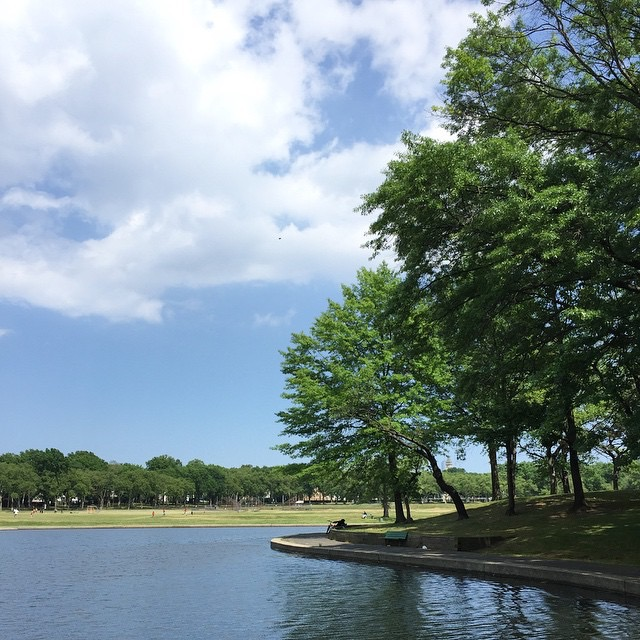 Photo of Lincoln Park, Jersey City, NJ - part of the West Side neighborhood