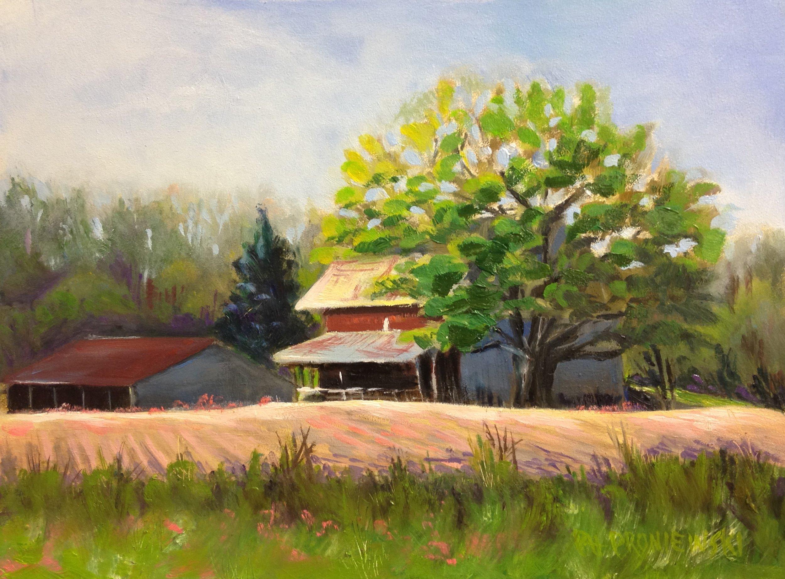 """Mile High Farm, Watkins Glen, NY"""