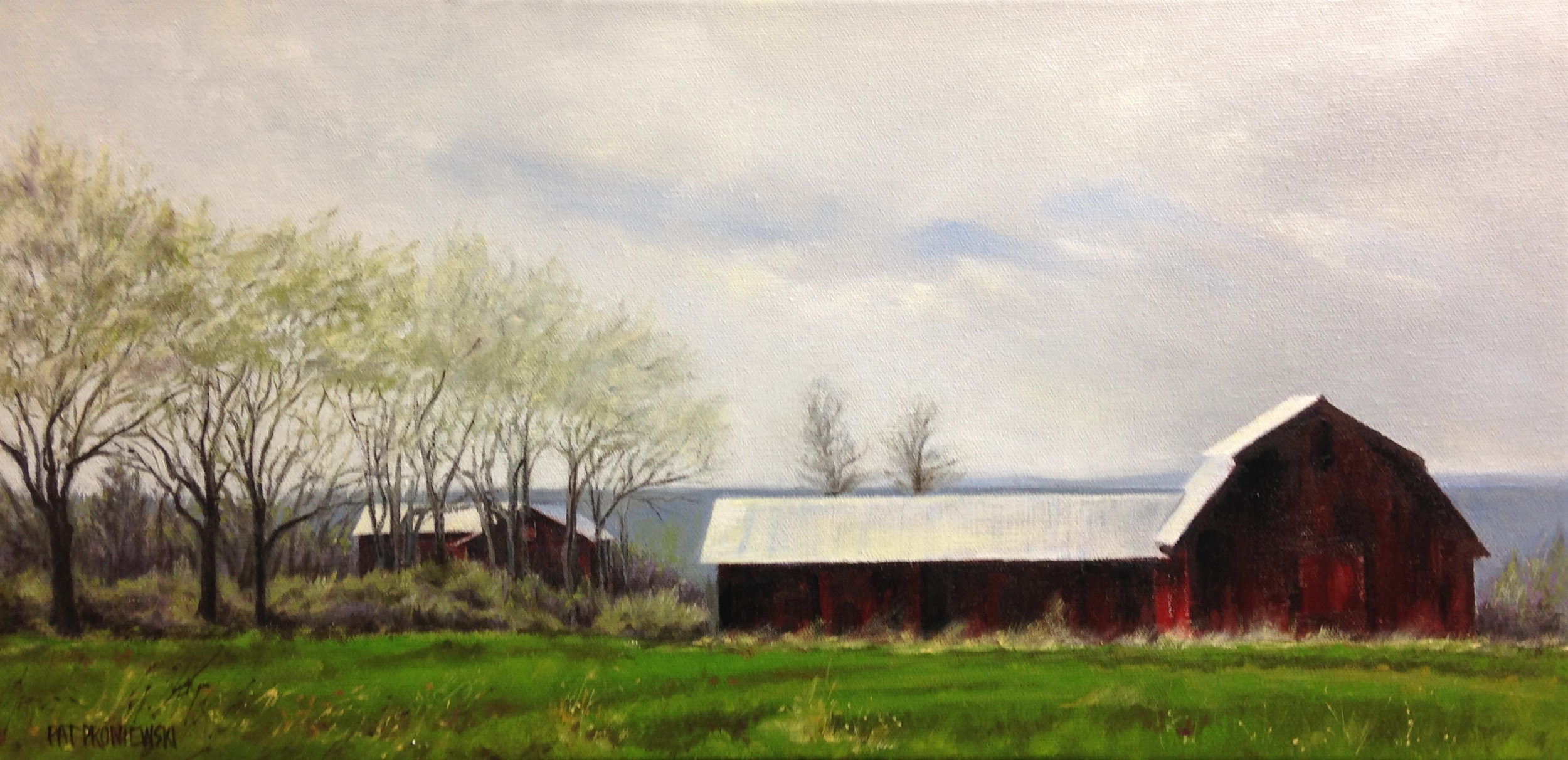 The Red Barn, Finger Lakes