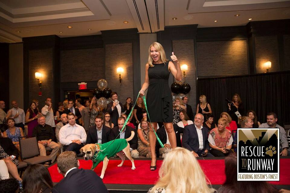 "September 2015:  Watchdog Mary walked an adorable dog up for adoption down the runway in the second annual ""Rescue to Runway"" event at the Hotel Commonwealth in Boston."