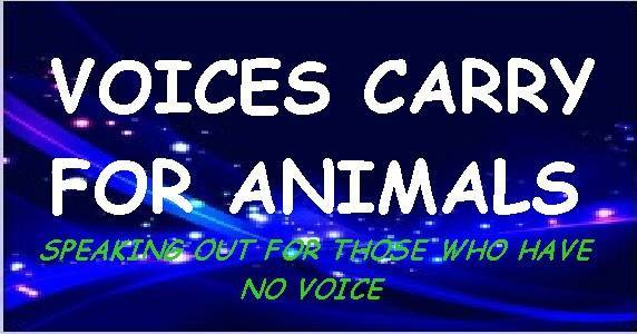"""The  """"Voices Carry for Animals""""  radio show hosted Watchdog Mary and Jeremy Boss on Tuesday, February 28th from 8pm to 9pm ET."""