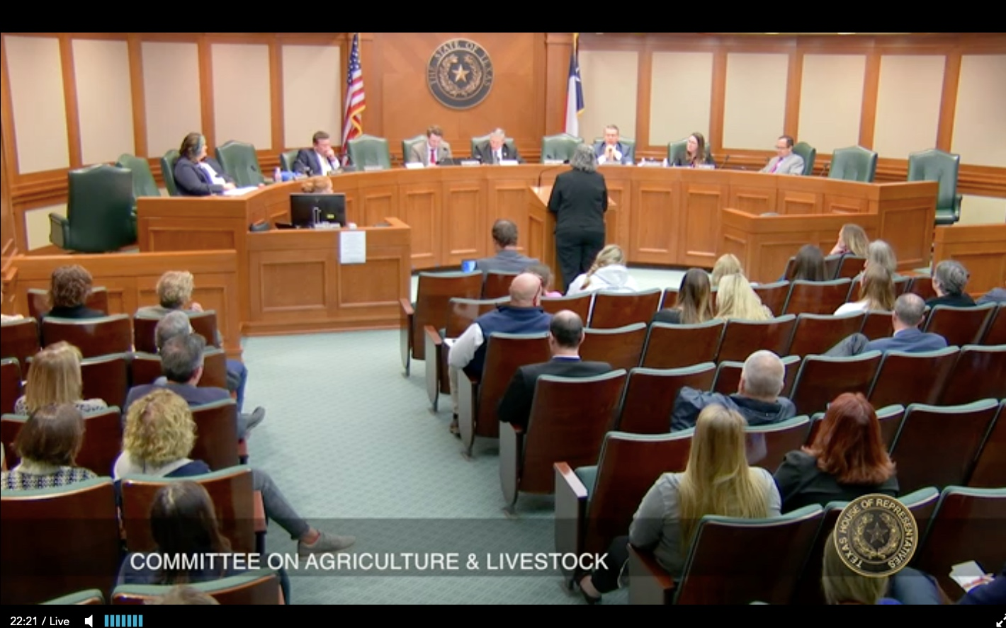 Hearing on bill, Credit: Texas House of Representatives public hearing feed