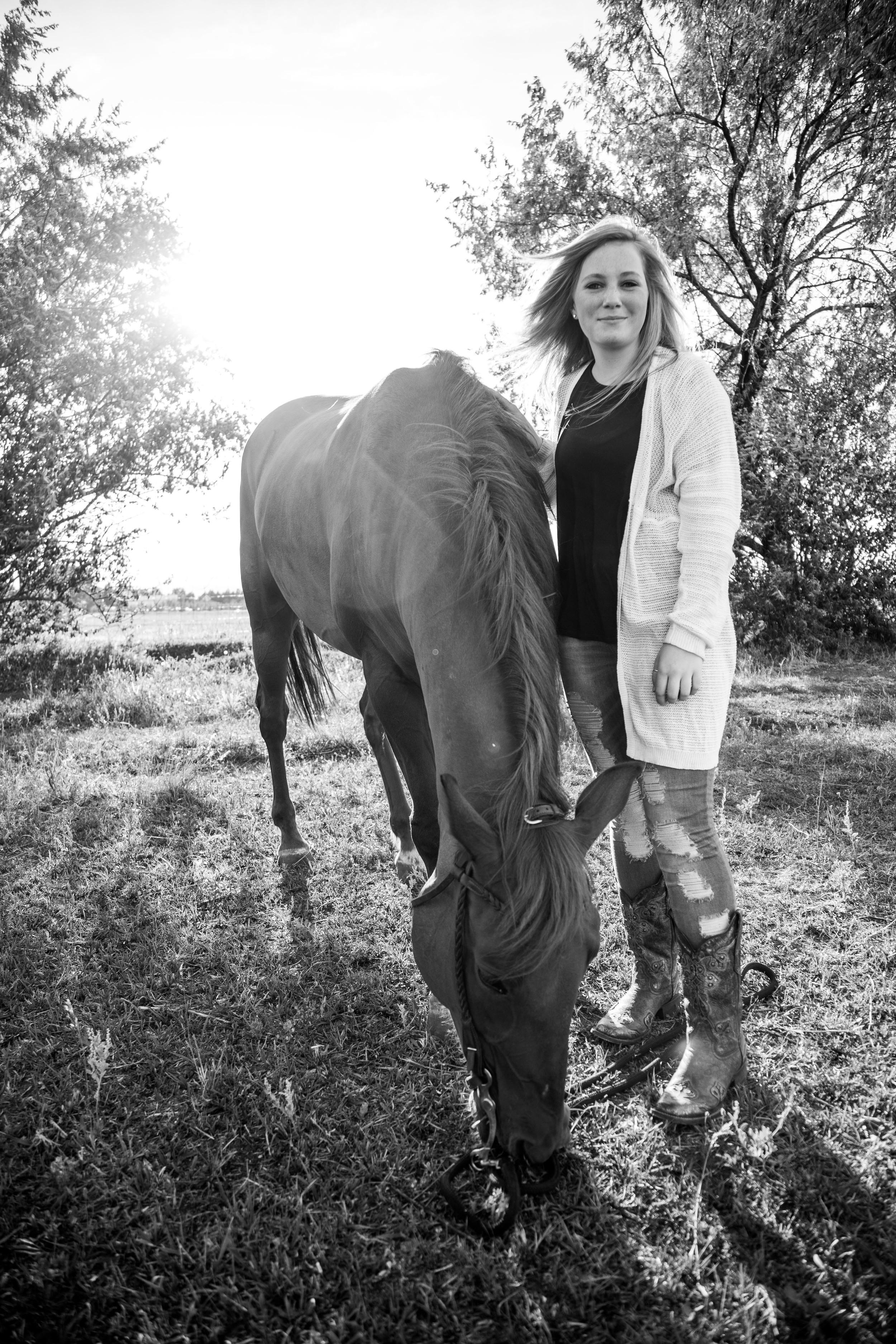 Equestrian Photography Denver Colorado