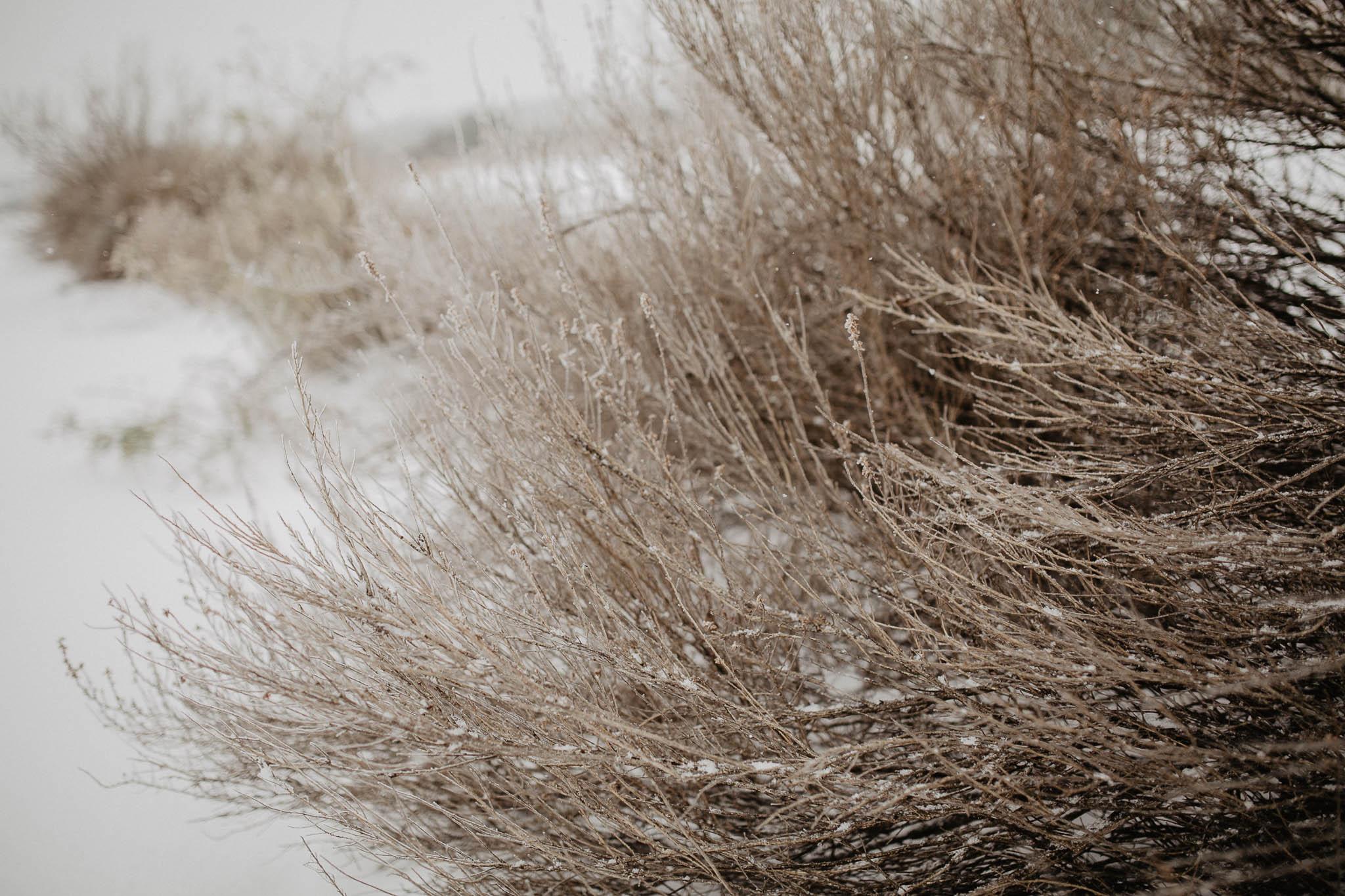 sesion-en-la-nieve-IMG_2931.jpg