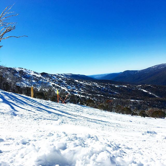 Taking in the long snowy mountains view. #snow #thredbo