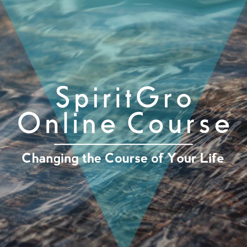 4 Week Online Mentorship Course