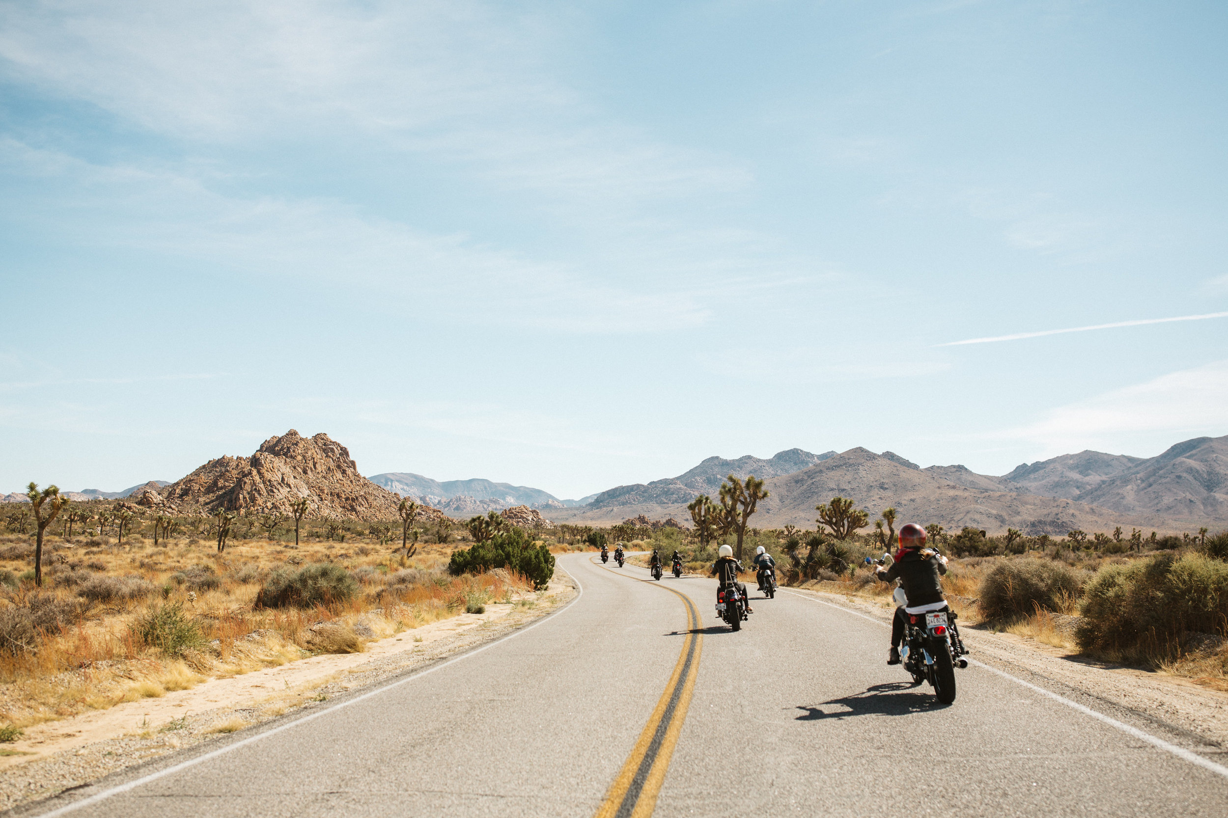 Photo of 2015 Babes Ride Out     Joshua Tree, CA     Courtesy of Jenny Linquist  http://jennylinquist.tumblr.com/