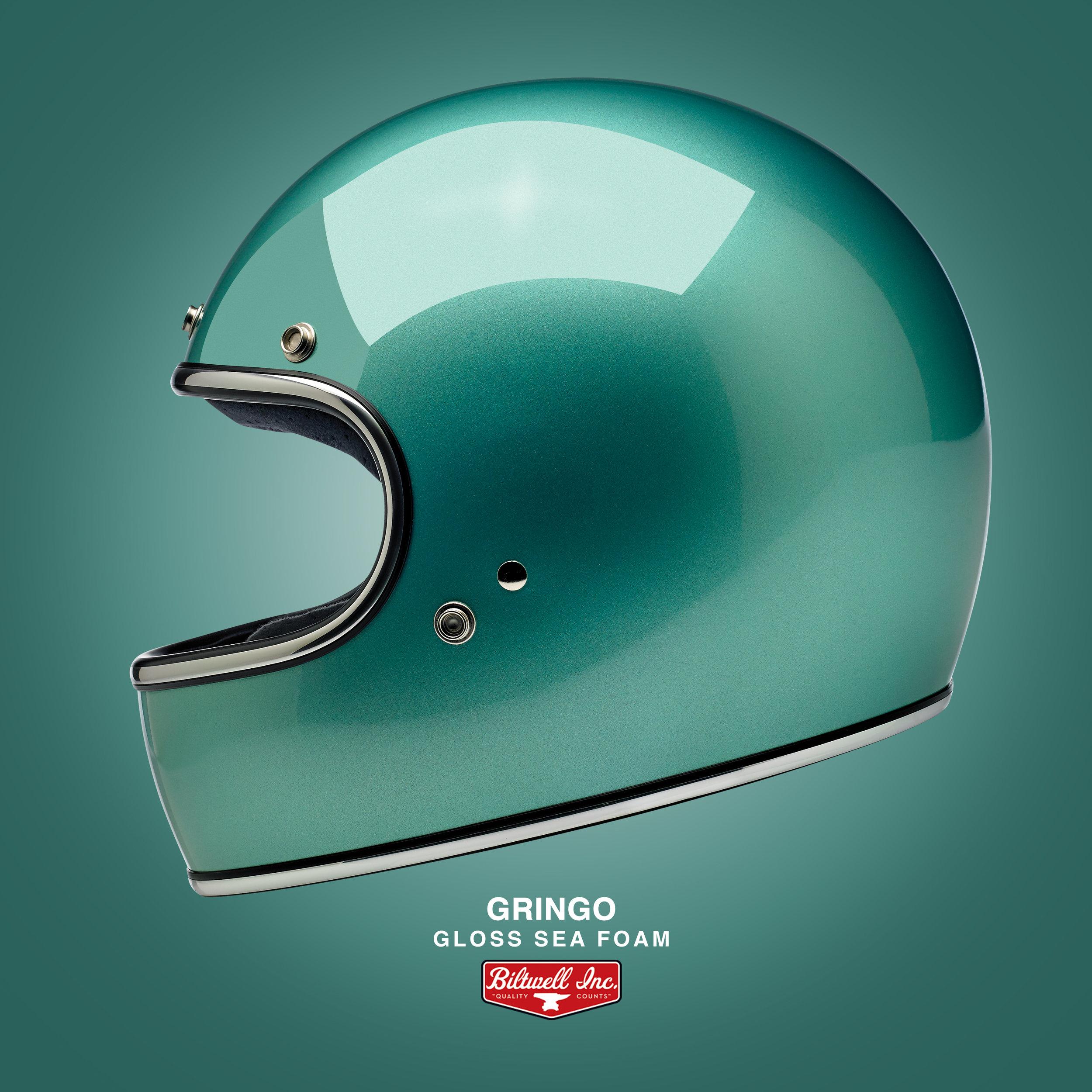 1002-113_Gloss Sea Foam Gringo Helmet Panel.jpg
