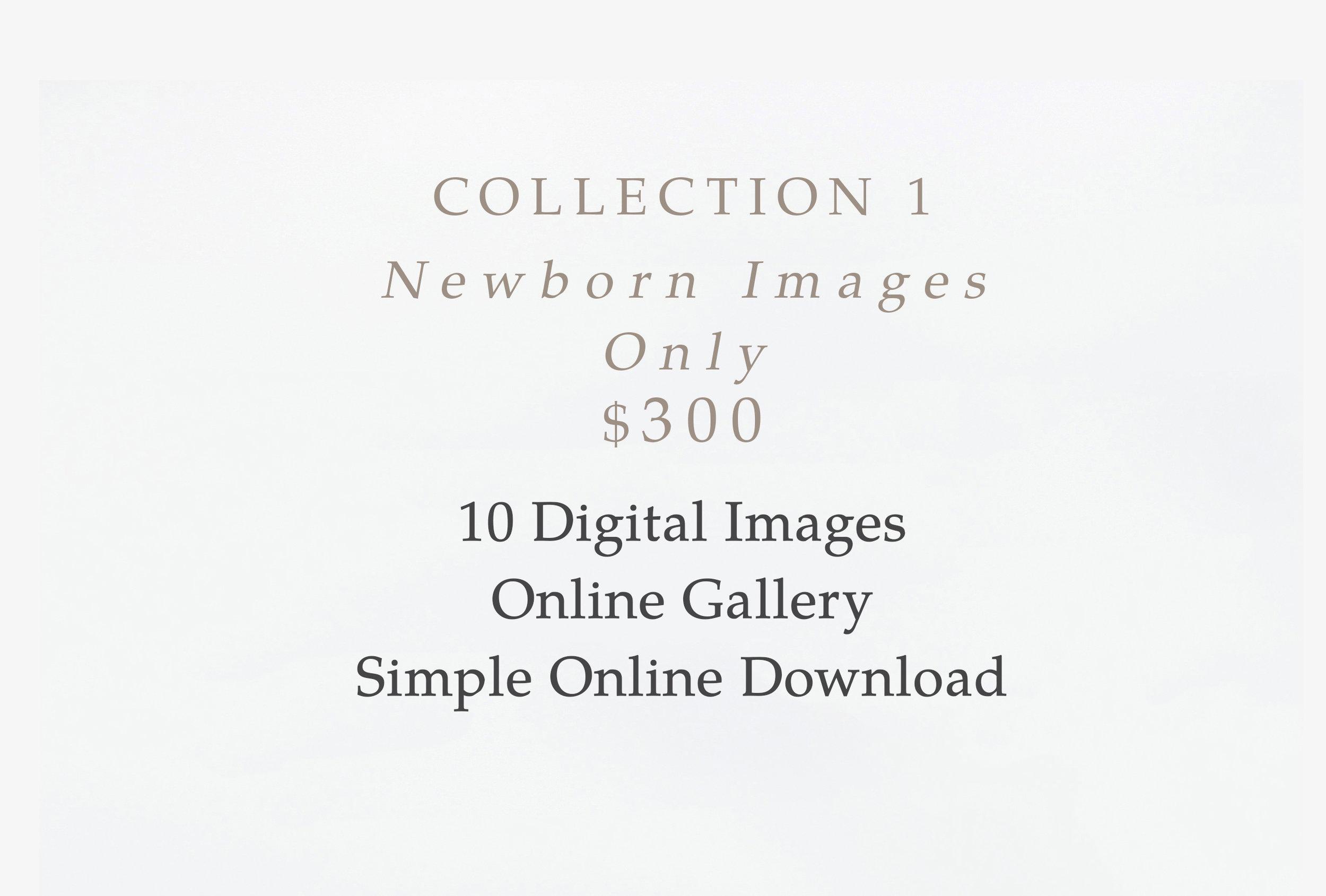 collectionI_graphic.jpg
