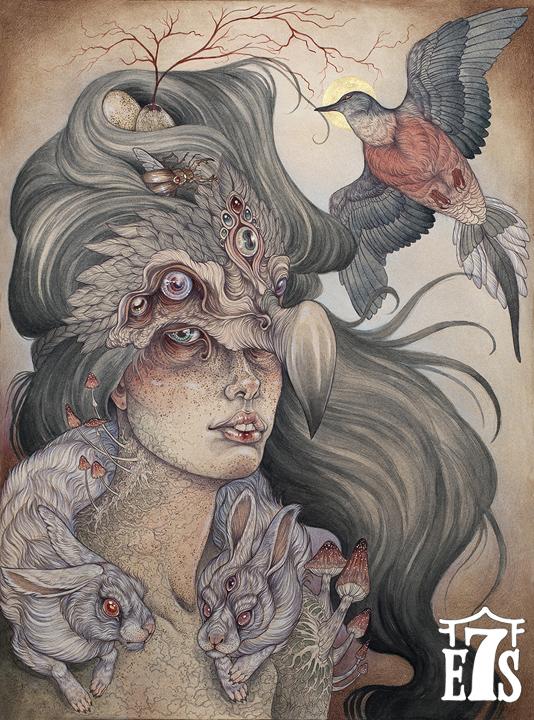 caitlin-the-dodos-widow_lowres.jpg