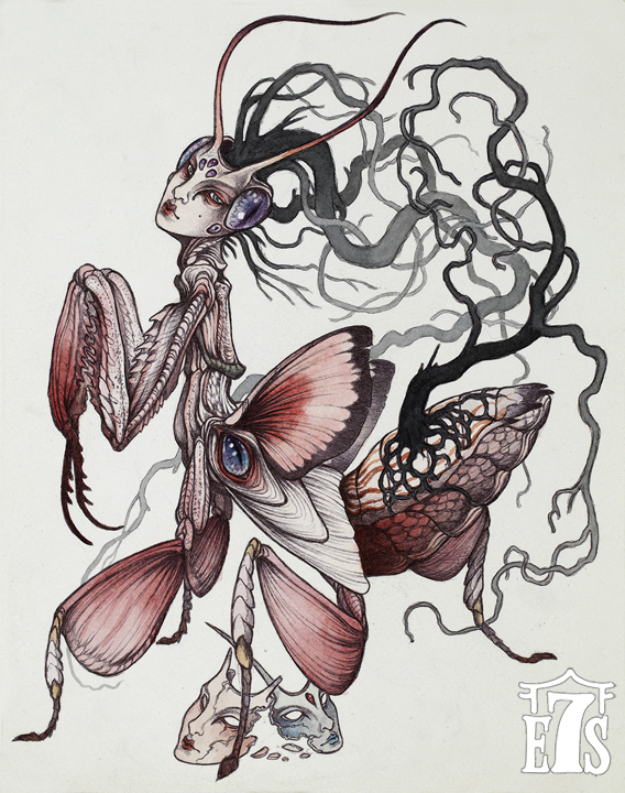 caitlin-orchid-mantis_lowres.jpg