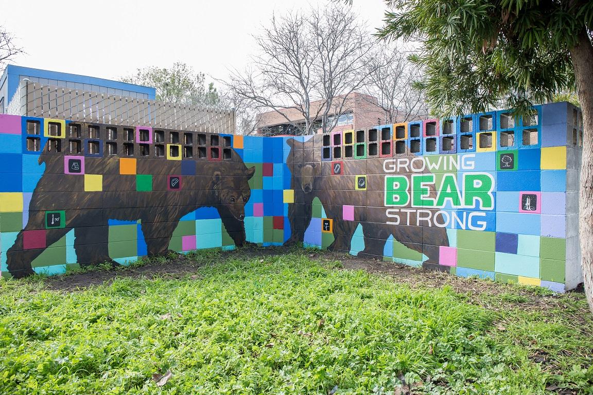 Bears low.jpg