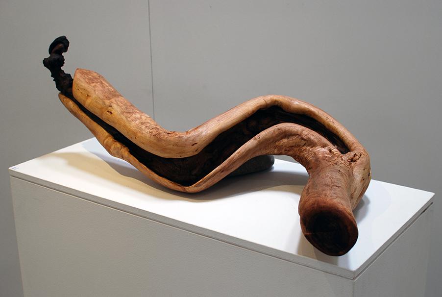 Copy of 'Untitled', Simon Gandevia, wood.