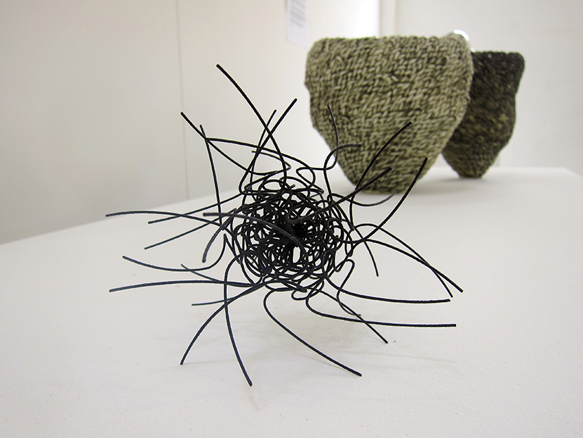 Copy of In the foreground:  'Platanceae', Wire for steel, Susann Taylor.