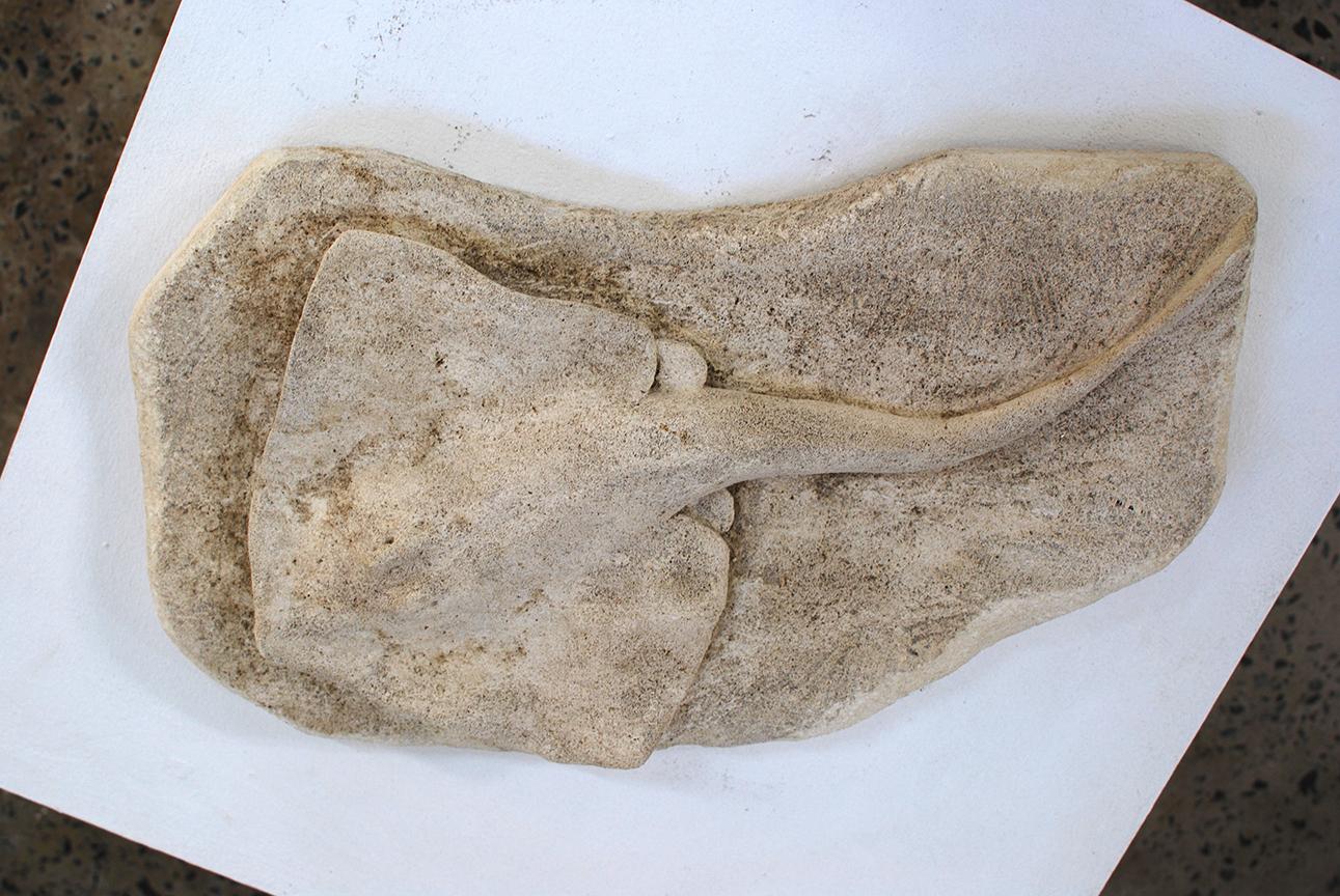 Copy of Stingray, limestone, $450