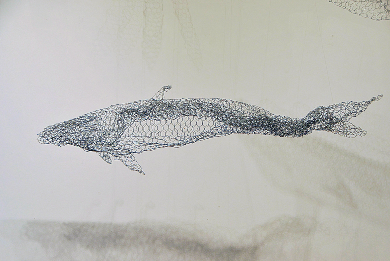 10 Whale (4).jpg