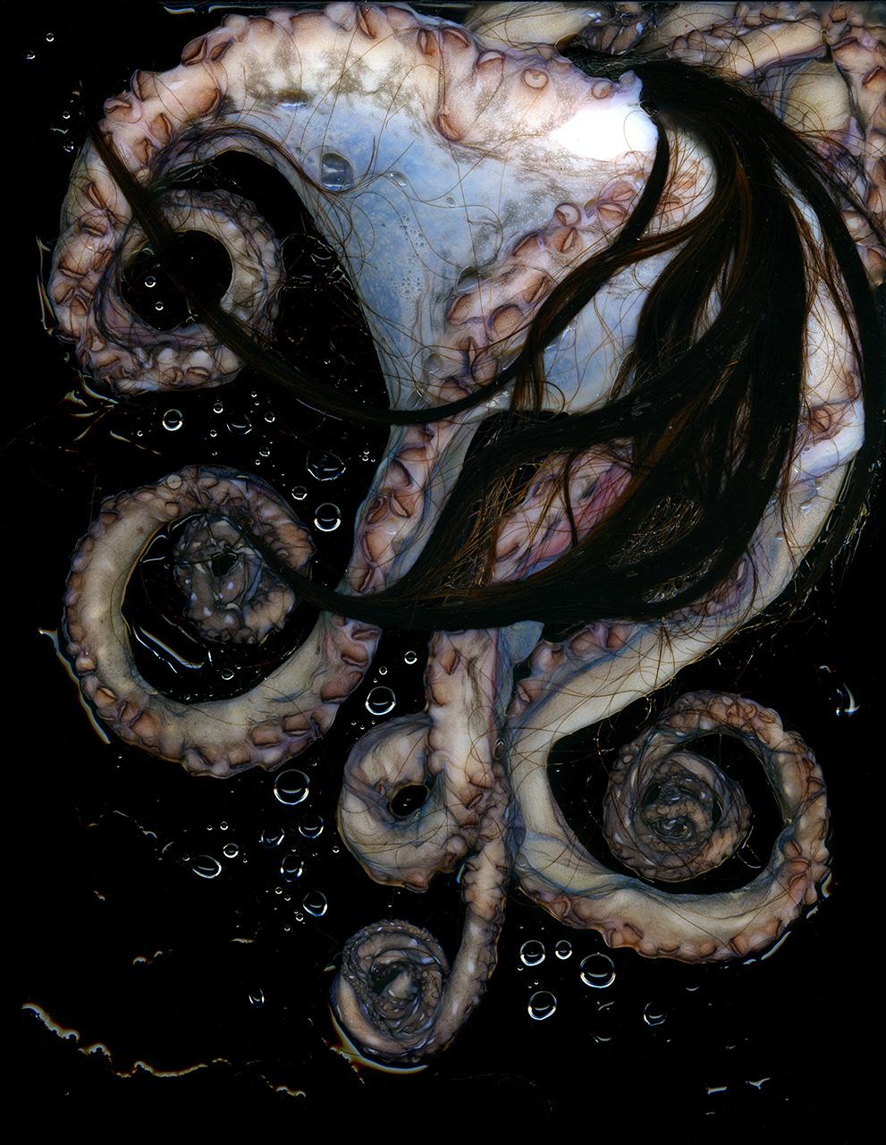 Hair Octopus2.jpg