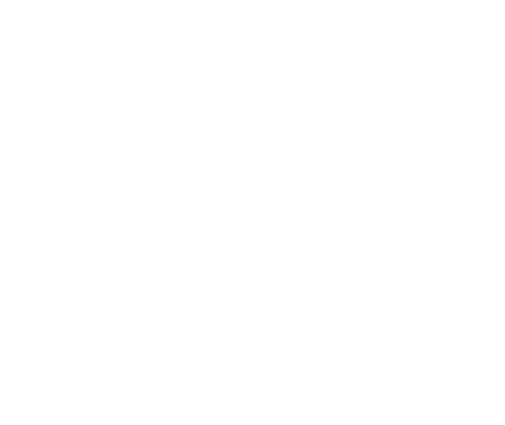 American-Eagle.png