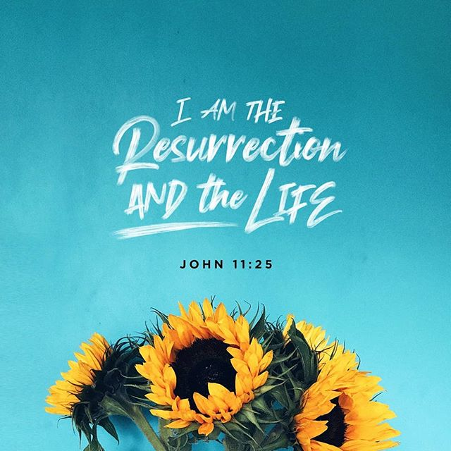 """HE IS RISEN!   Jesus said to her, """"I am the resurrection and the life. Whoever believes in me will live, even though they die. Everyone who lives and believes in me will never die. Do you believe this?"""" John 11:25-26 CEB"""
