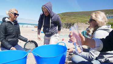Surfers Against Sewage helped mobilise me into action... - If you want to get involved you can organise a beach clean, sign up your local school to