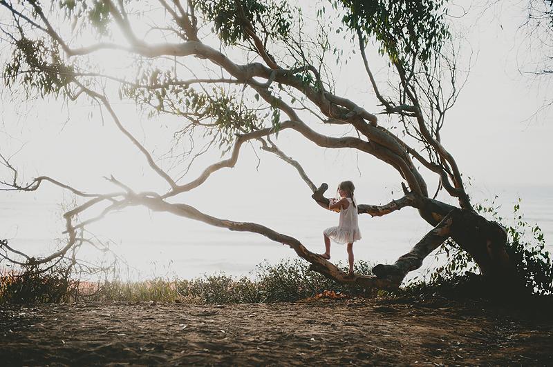 girl climbing tree at california beach