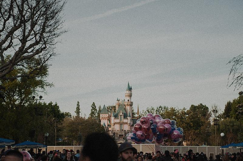 Disneyland castle theme park crowd