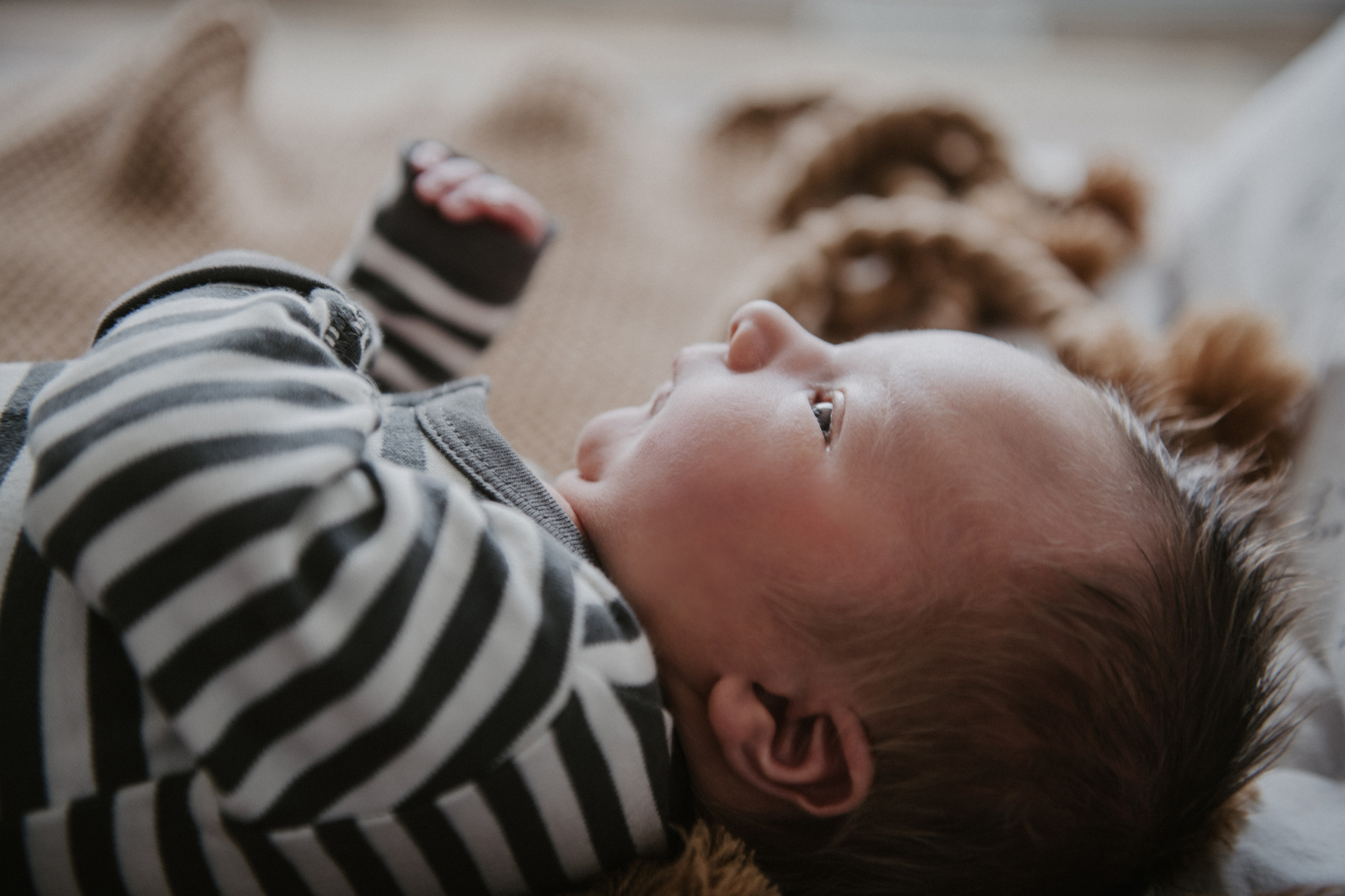 close up of newborn baby boy in striped onesie